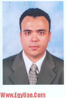 amgad gohary