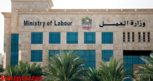 وزارة-العمل-الإماراتية-620x330