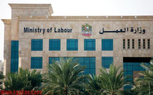 وزارة-العمل