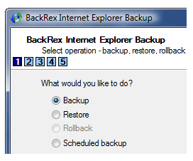 BackRex IE backup & restore