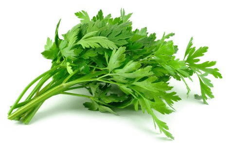 Using Parsley leaves to delay menstruation