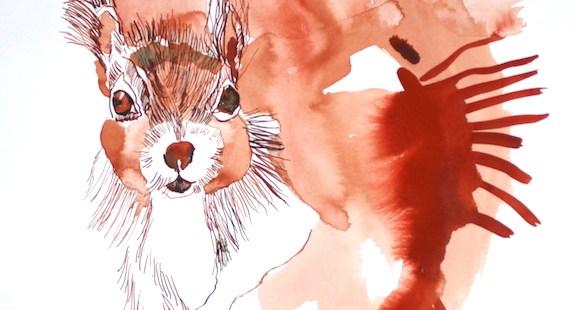 Tuschezeichnung von einem Eichhörnchen von Susanne Haun.