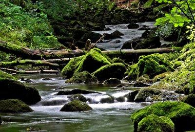 Müllenborn, Vulkaneifel, Eifelwasser, Wasserfälle
