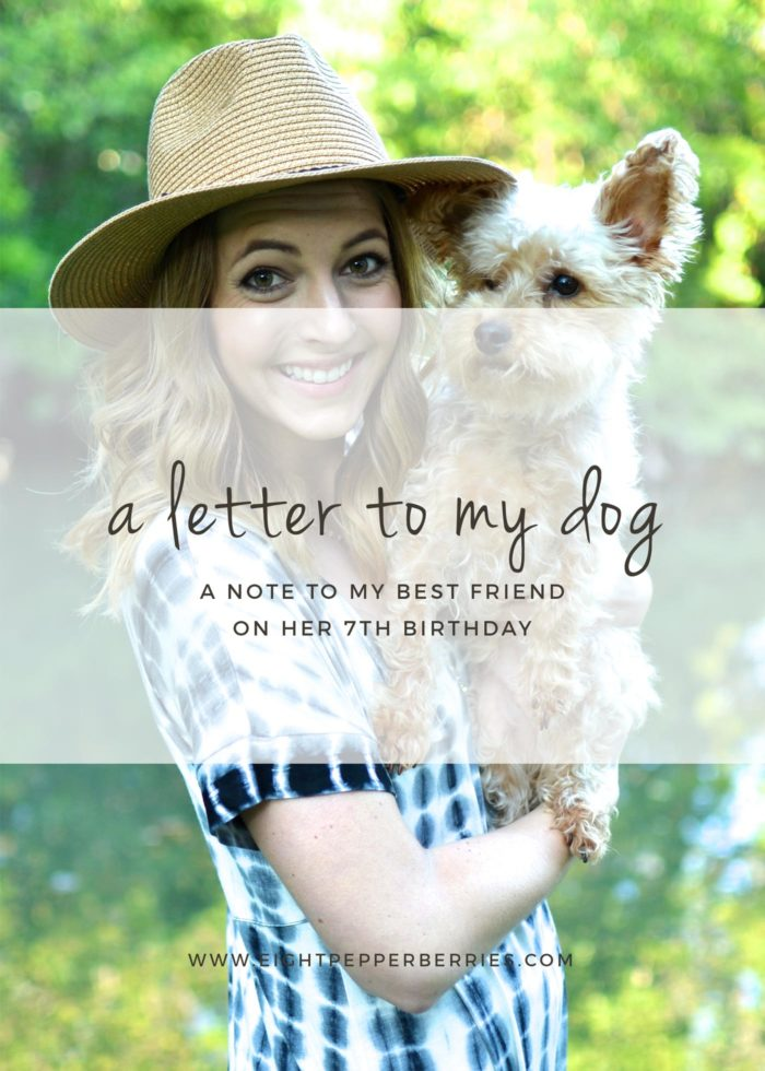 A Letter To My Dog, A Note To My Best Friend On Her 7th Birthday >> Eight Pepperberries