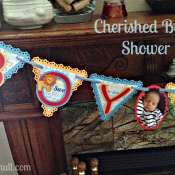 Cherished Baby Shower