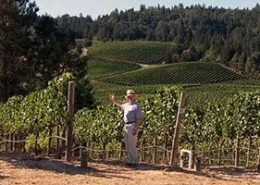 A video for a winery visitors' center