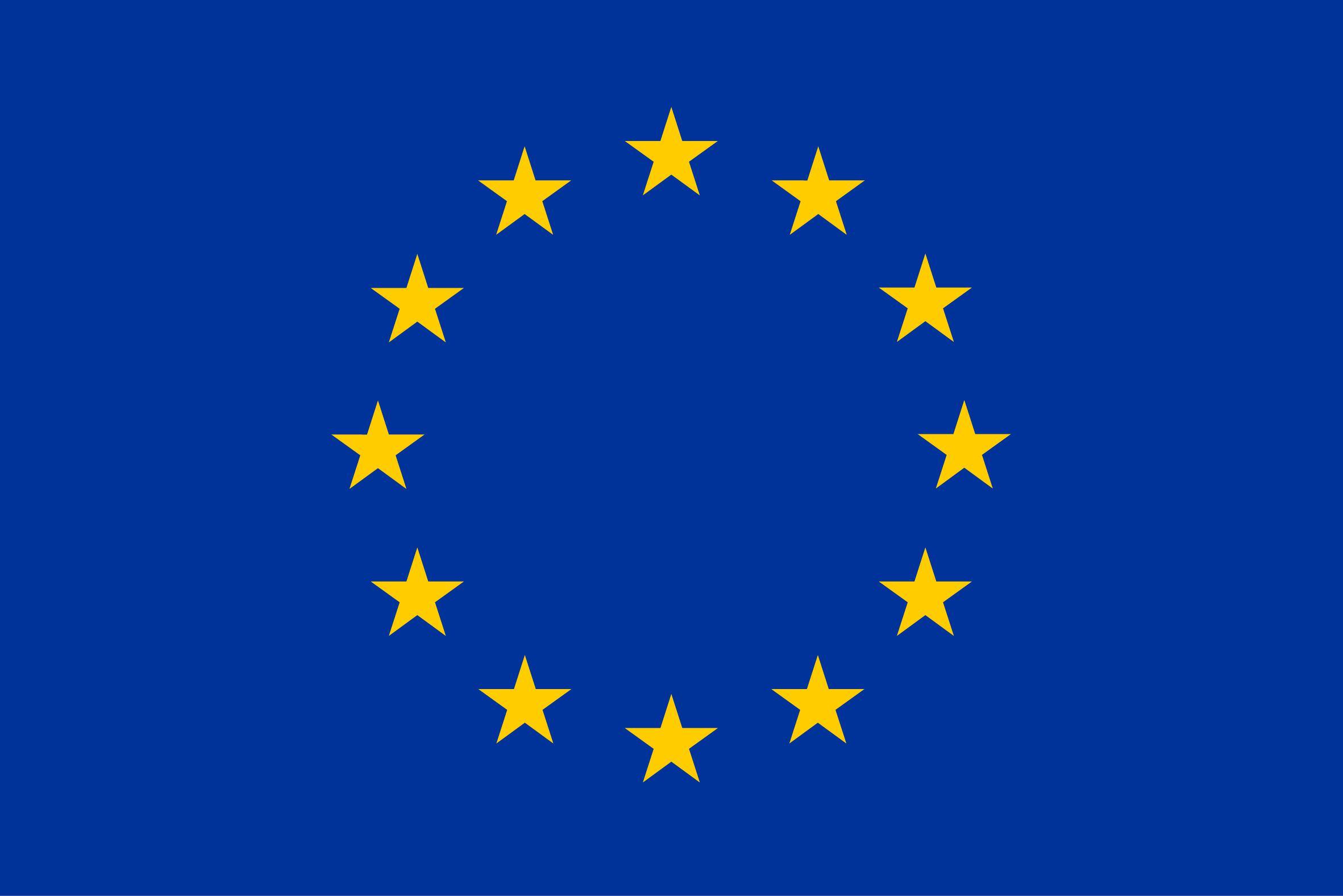 Europawahl: Die Wahlprogramme der Parteien im Überblick