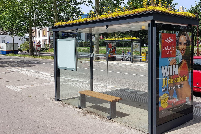 """""""Bee Stops"""" für Eimsbüttel? SPD will bienenfreundliche Haltestellen"""