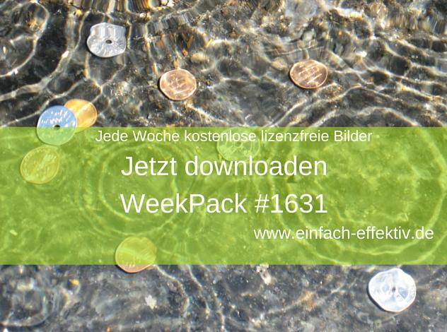WeekPack-1631 – Kostenlose Fotos