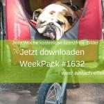 WeekPack_1632