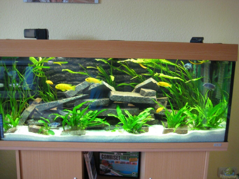 Aquarium Von Superreal Juwel Rio 240