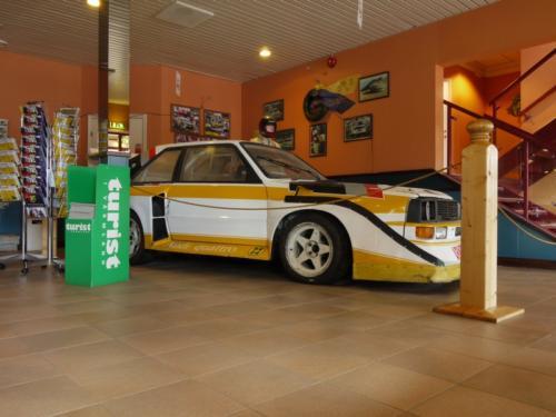 911 Safari in Schweden