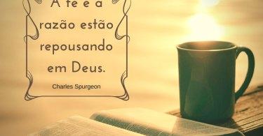 Bom Dia - A fé e a razão estão repousando em Deus