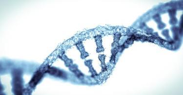 Nosso DNA não é o mesmo em todas as células do corpo; conheça o mosaico que nos define