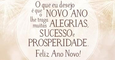O que eu desejo é que o novo ano lhe traga muitas alegrias, sucesso e prosperidade!