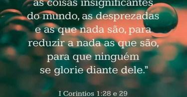 1 Coríntios 1:28 e 29