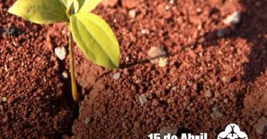 O solo é a base da vida!