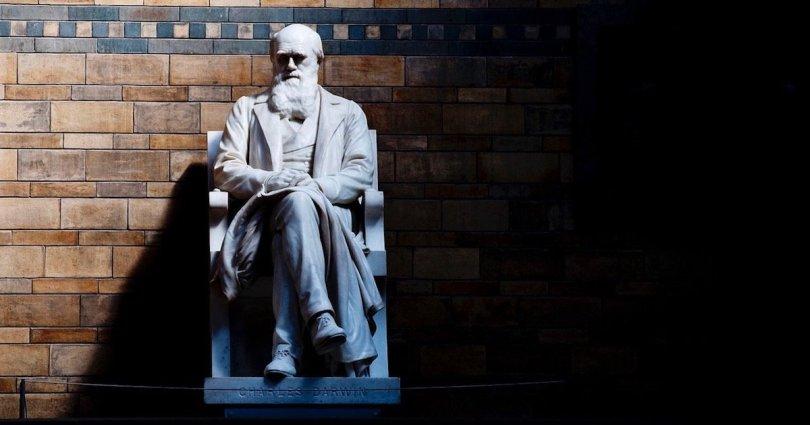 Mais de mil cientistas contestam publicamente a teoria da evolução