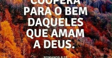 Tudo coopera para o bem daqueles que amam a Deus