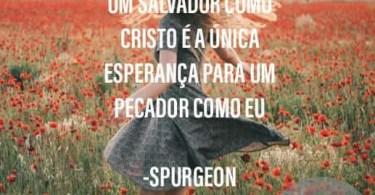 Um Salvador como Cristo