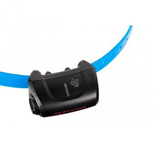 Collar Canicom 5 adicional azul