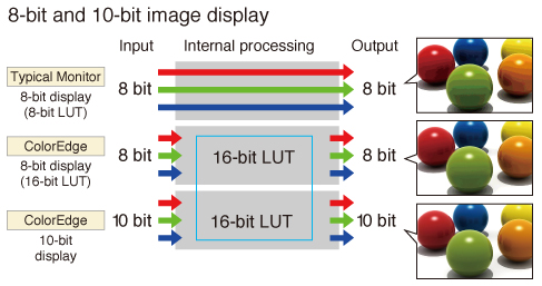 10bit and 8bit Eizo Displays
