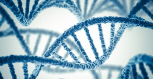 Genetic Causes Of Premature Ejaculation