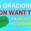 25 Oraciones Con Want to En Inglés   Sentences With Want to