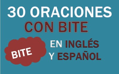 Oraciones Con El Verbo Bite