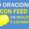 30 Oraciones Con Feed En Inglés | Frases Con Feed