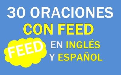 Oraciones Con Feed En Inglés
