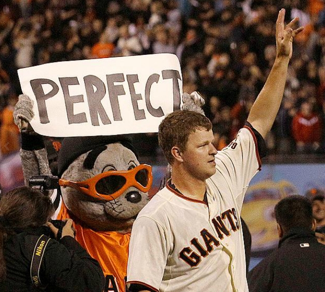BASEBALL PERFECTION WITNESSED!