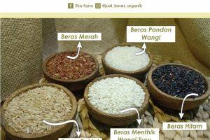 hidup sehat dengan beras organik dan ikut melestarikan bumi