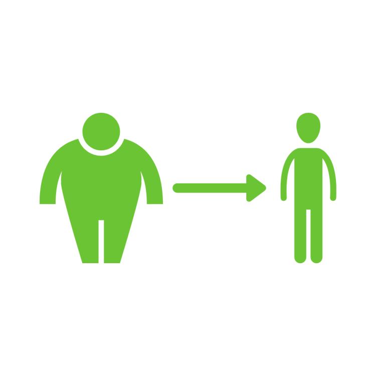 Diet Menurunkan Berat Badan