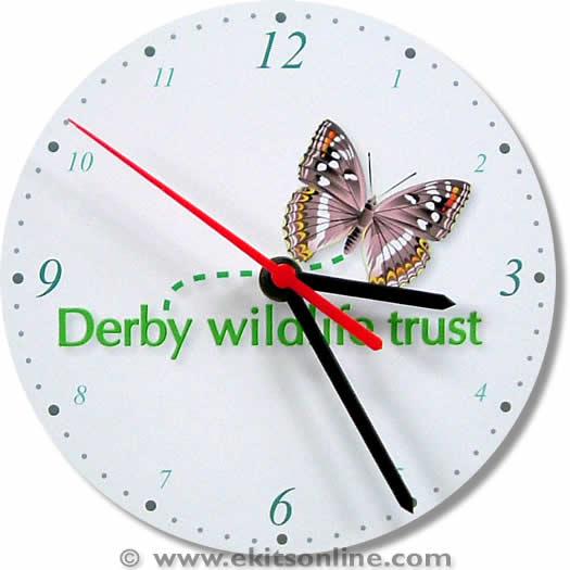 Derby wildlife trust Clock