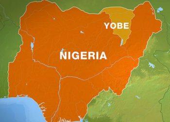 APC Emerges Winner Of Yobe Local Govt Election