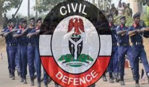 50 Armed Herdsmen Arrested In Three States – NSCDC