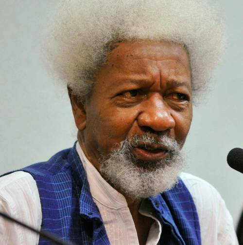 We Are Working With UN To Protect Part Of Nigeria – Soyinka