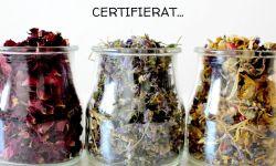 Hållbart, plantbaserat, certifierat och patent