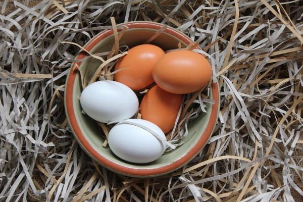 Mercati azionari in bilico. Sospesi tra l'uovo oggi e la gallina (magra) domani.
