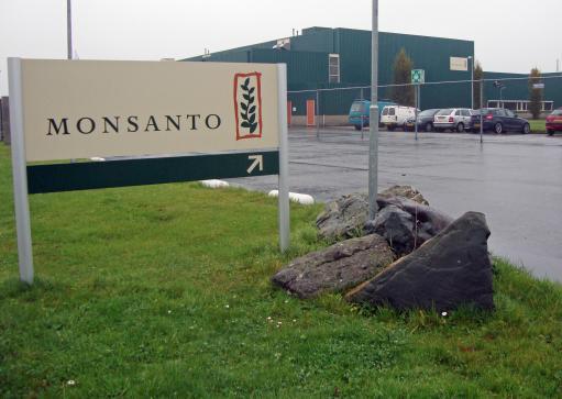 Monsanto Glyphosate Evaluation UE