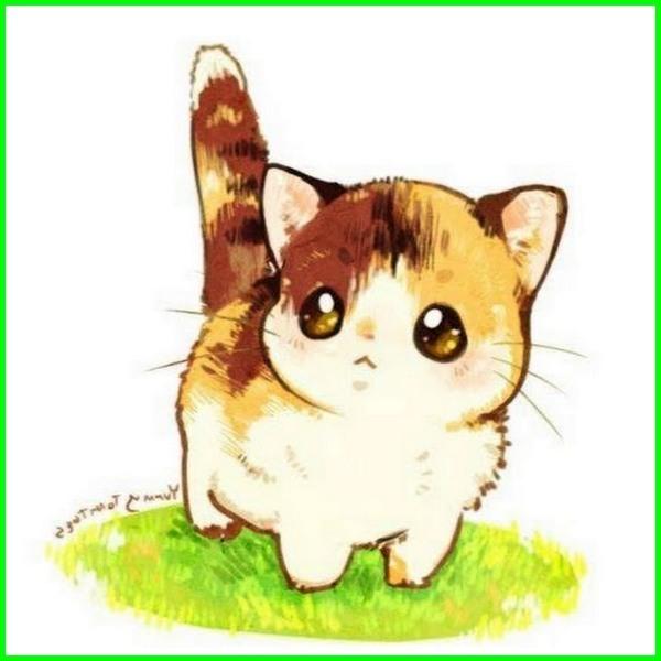 Download 65+  Gambar Kucing Imut Lucu Gemesin Terlihat Keren HD