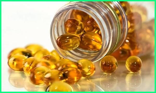 manfaat minyak ikan, manfaat minyak ikan salmon, manfaat minyak ikan untuk anak, manfaat minyak ikan untuk ibu hamil, manfaat minyak ikan untuk burung, manfaat minyak ikan gabus