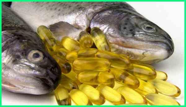 fakta tentang minyak ikan, jurnal tentang minyak ikan, jurnal tentang minyak ikan pdf, 1 kapsul minyak ikan berapa gram