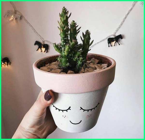 pot kaktus unik, pot kaktus lucu, pot kaktus sukulen, pot keramik untuk kaktus, pot unik untuk kaktus, pot yang cocok untuk kaktus, cara membuat pot untuk kaktus