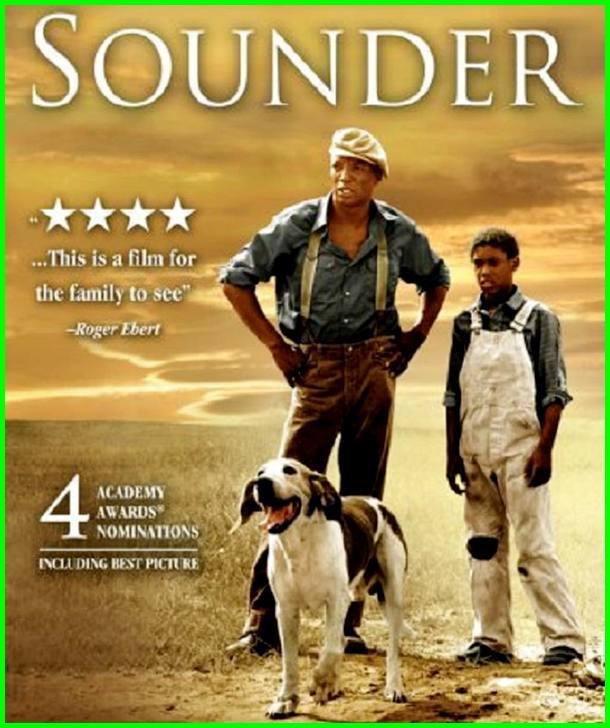film anjing sama manusia, film anjing dengan manusia, film anjing dan manusia sedih bikin nangis