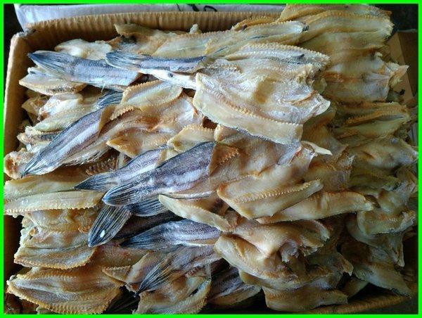 jenis ikan asin yang sedap, semua jenis ikan asin, beli ikan asin segala jenis yg grosiran, jenis ikan asin tts, jenis ikan asin yang enak, jenis ikan yang dibuat ikan asin, 10 jenis ikan asin, 10 jenis ikan air asin, macam 2 ikan asin