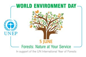 Forests: Nature at Your Service