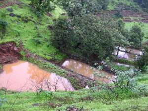 Cascading check dams to slow run-off and prevent gully formation