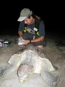 Oscar Aranda Mena with turtles